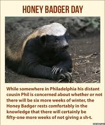 Honey Badger Meme - 700685