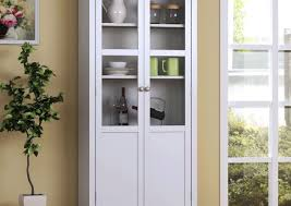 Storage Cabinet With Doors And Drawers Shelf Hypnotizing 2 Shelf Storage Cabinet With Doors Engaging