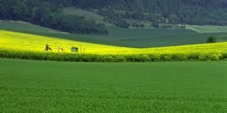 chambre d agriculture nord grand nord des pratiques de développement économique à accorder