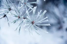 11 wonderful winter weather terms mental floss