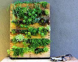 furniture marvelous phenomenal indoor herb gardens vertical
