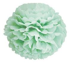 mint green streamers paper party pom poms and streamers cherry