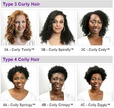 Hair Types by I Am 100 What Is My Hair Type For