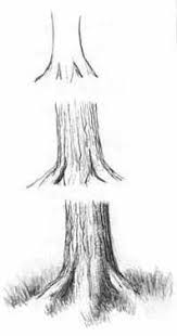 52 best how to draw realistic trees plants bushes and rocks