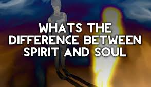 man as a trinity what is the difference between spirit and soul