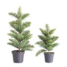 100 christmas tree saplings faux noble fir sapling u2013