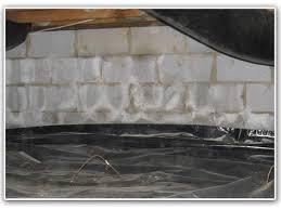 basement efflorescence waterproofing problem sign