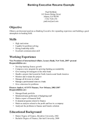 resume format for senior accounts executive in seksyen resume leadership sle executive sles prime exles for