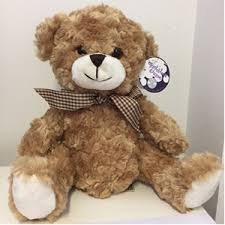 get well soon bears delivery teddy teddies and other soft gifts gift delivery