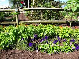 Types Of Garden Fences - views from the garden types of fences for home use