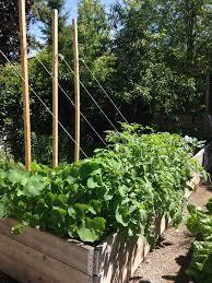 Edible Garden Ideas 288 Best Edible Garden Ideas Images On Pinterest Herb Garden