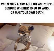 Monday Meme Images - happy monday meme by knightofcydonia memedroid