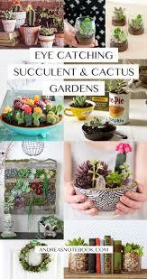 Succulent And Cacti Pictures Gallery Garden Design Cactus Garden Pot Home Interiror And Exteriro Design Home