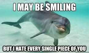Funny Miami Dolphins Memes - i may be smiling funny dolphin meme