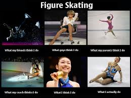 Figure Skating Memes - image 252203 what people think i do what i really do know