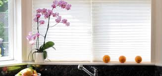 window treatments throughout the ages