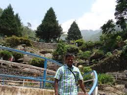 Rock Garden Darjeeling by Needa Mohan