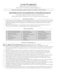 Resume It Sample by It Manager Resume Sample Berathen Com