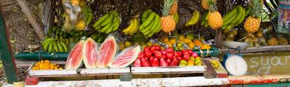 fresh fruit and vegetables visit jamaica