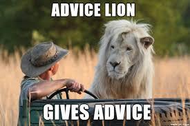Lion Meme - advice lion meme on imgur