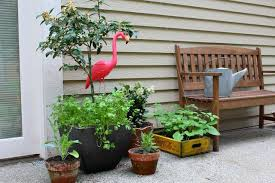 container vegetable gardening for beginners ehow