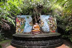 buddha statue meditating the bodhi tree stock photo picture