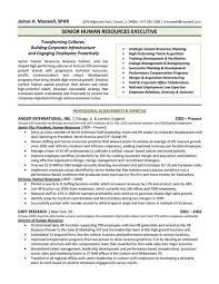 simple resume format for freshers pdf merger hr executive resume sles free human resources manager director