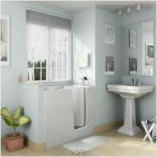bathroom decor for small bathrooms wall paint color combination