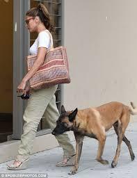 belgian shepherd uk eva mendes keeps her guard dog hugo close but the excitable canine