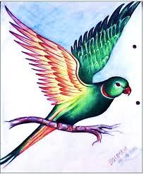 pencil color sketch of bird desipainters com
