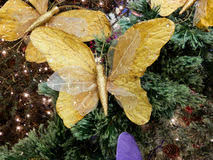 white butterfly on a christmas tree stock image image 21115611