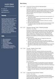 Appealing Resume Title Examples Customer by Customer Service Cv Examples And Template