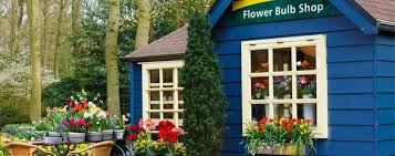 local florist finding a local florist and local flower delivery information