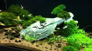 cool fish tank ornaments ideas