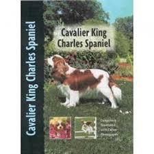 cavalier king charles spaniel dog breed book amazon co uk