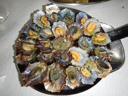 cuisiner les berniques lapas excellent bernique ou patelle en picture of
