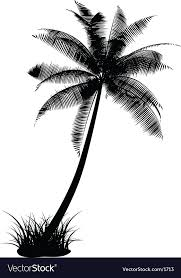 palm tree design royalty free vector image vectorstock