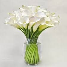 white lillies large white modern calla lilies luxuriously modern flowers