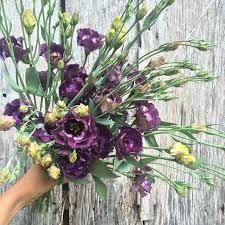 June Flowers - 84 best june flowers images on pinterest flowers flower
