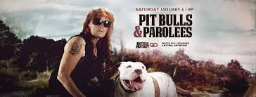 Seeking Season 1 Episode 3 Pitbull Pit Bulls And Parolees Home