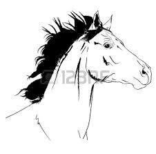 325 arab horse stock illustrations cliparts and royalty free arab