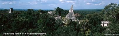 custody continuity the preservation success of the maya