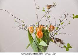Vase With Twigs Decor Single Tulip Vase Stock Images Royalty Free Images
