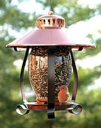 finch and thistle bird feeders at wild birds forever