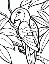 beautiful parrot coloring pages for kids to color in coloring point