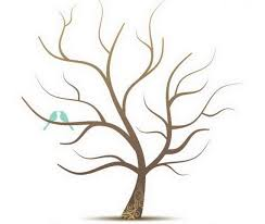 family tree template no leaves family tree craft template great
