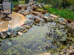 wonderful home ponds sized in small area completed with natural