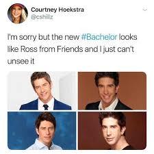 Bachelor Meme - dopl3r com memes courtney hoekstra cshillz im sorry but the new