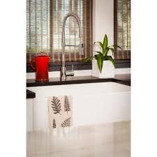 Danze Pre Rinse Faucet Danze Dh451188 The Foodie Chrome Pro Pre Rinse Units Kitchen