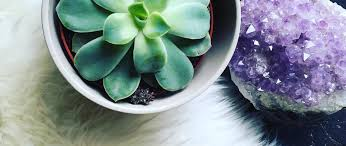 crystals the truth about how magic crystals heal your body and your pot